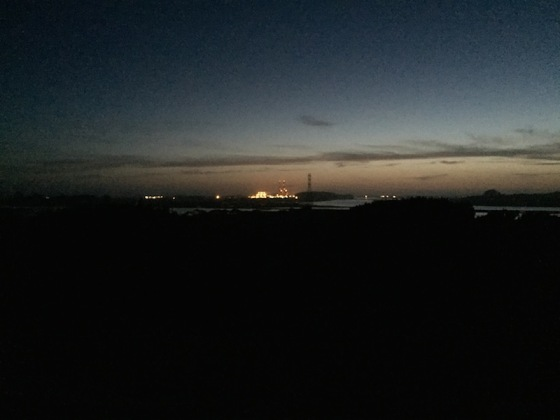 Elkhorn Night